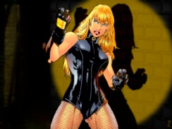 Black Canary by Ed Benes