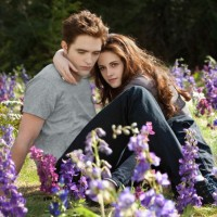 Breaking Dawn Part 2: The End is Nigh