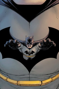 Batman, Incorporated - Grant Morrison, Chris Burnham - DC